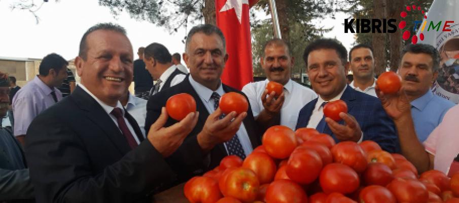 Çamlıbel Domates Festivali başladı...