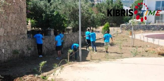 Girne'de gençler iş başında...