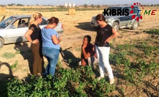 Tarım Dairesi'nin eğitim çalışmaları sürüyor