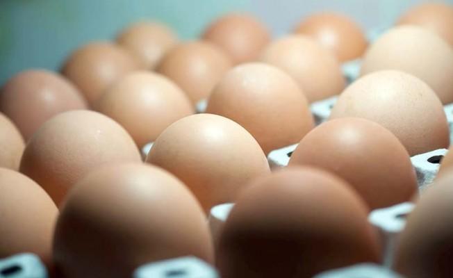 Yumurtada zehir alarmı Türkiye'ye sıçradı