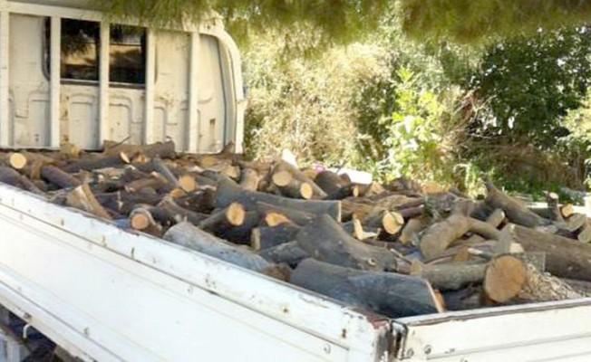 Ormancılar caydırıcı ceza istedi!