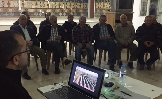 Tarım Dairesi'nin çalışmaları Akdeniz köyünde devam ediyor