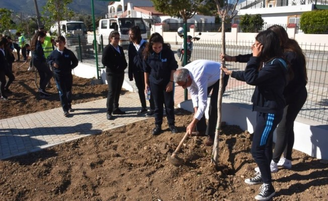 Girne Belediyesi'nin ağaçlandırma çalışmaları sürüyor...