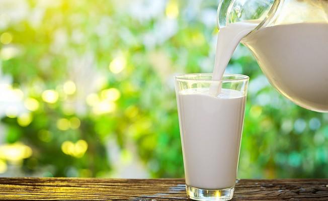 Sahurda 1 bardak süt için