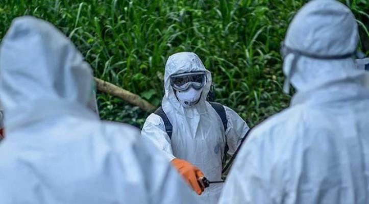 Kongo'da Ebola salgını