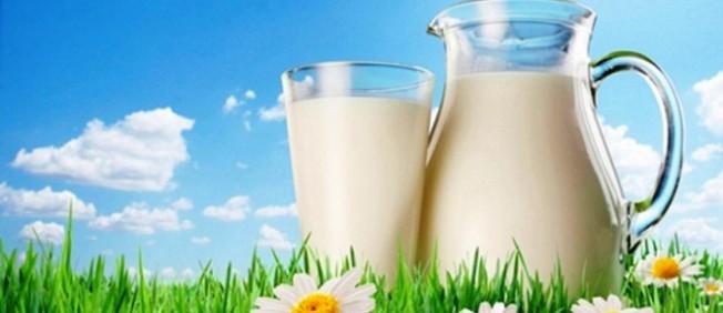 Süt bedelleri ödenmeye başlandı