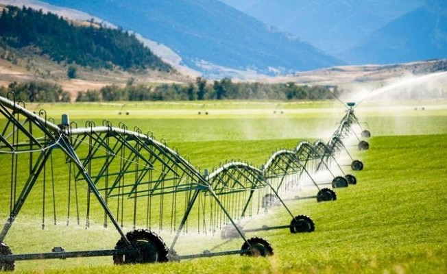 """Tarımsal üretime """"Yavru Vatan"""" katkısı"""