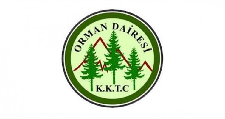 Orman Dairesi 125 kişi istihdam edecek...