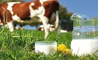 """""""Süt imalatçıları karalanmak isteniyor..."""""""