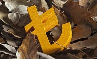 TL'deki düşüşün 5 nedeni