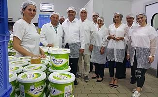 Karavezirler, Süt Ürünleri Üreticileri'ni ziyaret etti