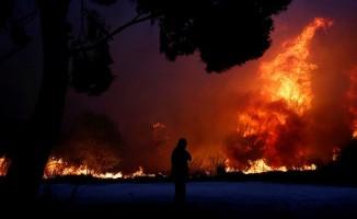 Yunanistan'da yangın ! En az 49 ölü