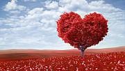 Hangi aşk türüne aitsiniz?