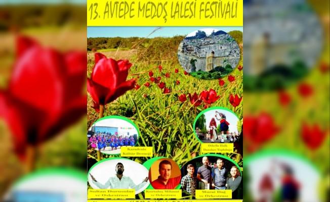 Avtepe Medoş Lalesi Festivali bu pazar