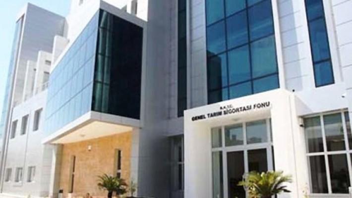 Tarım Bakanlığı zeytin üreticlerini uyardı