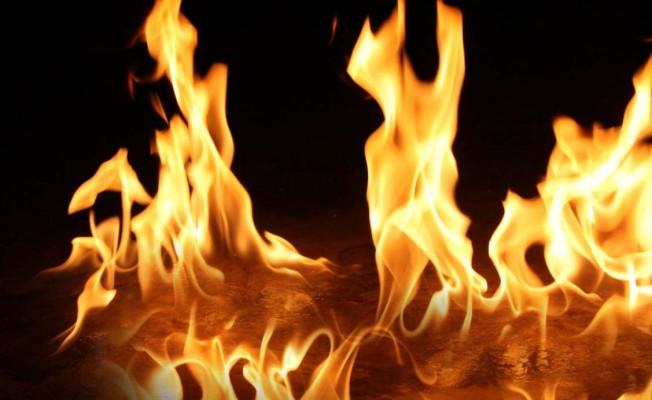 Yayla'da narenciye bahçesinde yangın