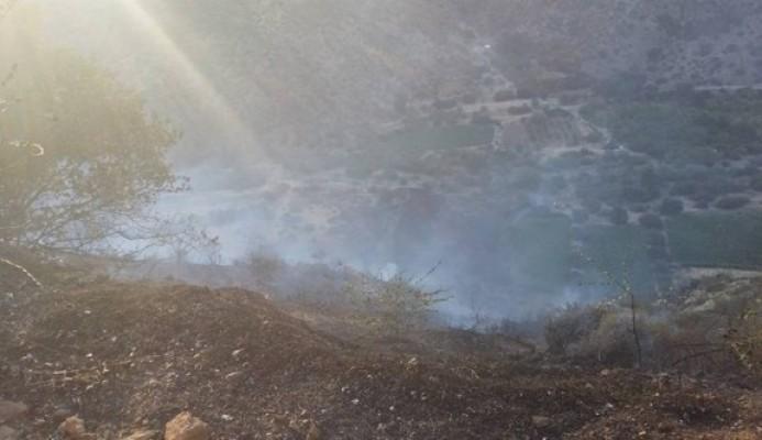 100 Dönüm orman arazisi yandı!