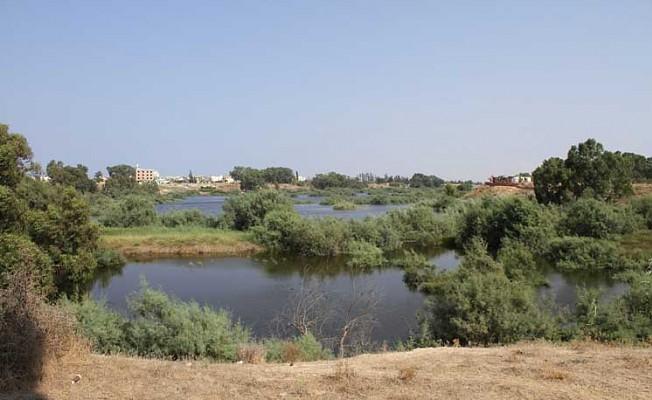 MKEP  Gazimağusa'da ilaçlama ve sulak alanla ilgili bilgi istedi.