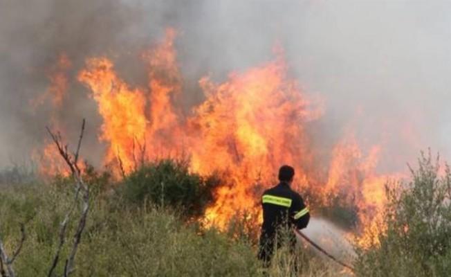 Pirgo'da büyük yangın!