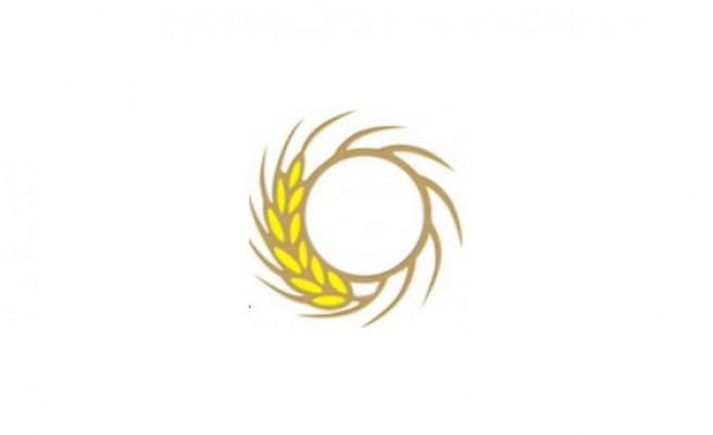 Ziraat Mühendisleri zeytin üreticilerine eğitim düzenliyor