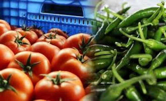 Biber ve domateste limit üstü kalıntı!