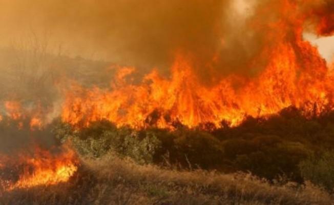 Baf'taki yangın 5 saaate söndürülebildi...