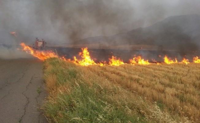 Haspolat'ta arazi yangını...