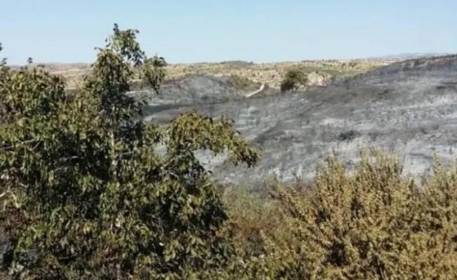 Limasol'daki yangın kontrol altına alındı...