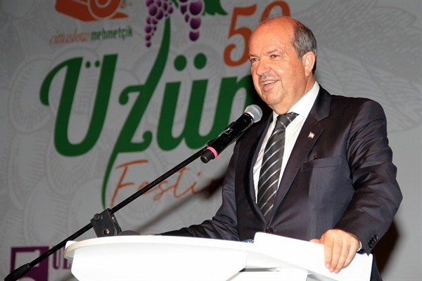 Mehmetçik Üzüm Festivali açıldı...