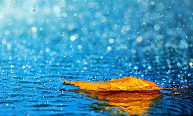 En fazla yağış Beyarmudu'na düştü...