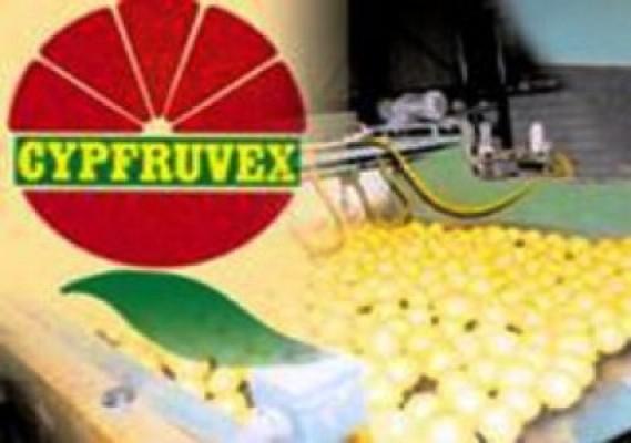 Cypfruvex ürün bedellerini çarşamba ödüyor