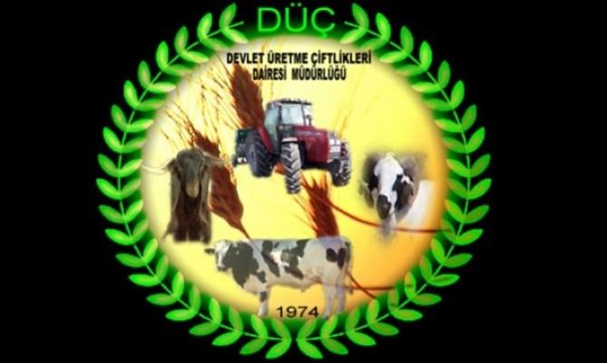 Büyükbaş hayvan ekipmanları açık artırma ile satılacak