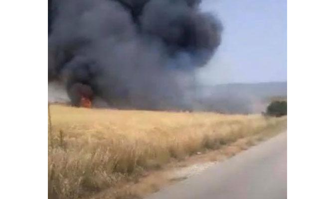 Altınova'da çıkan yangın kontrol altına alındı...