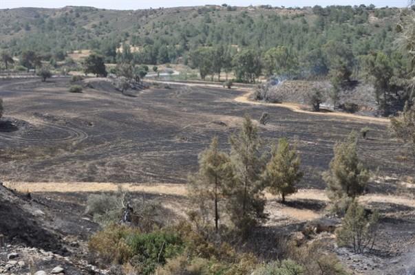 Oğuz: Dünkü yangın 1995 sonrası en büyük yangın…