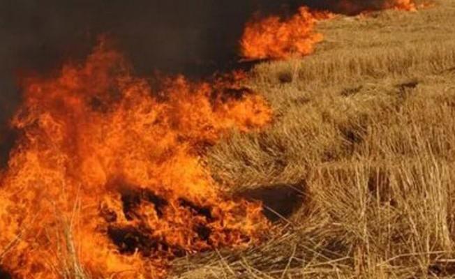 PGM yangınlara karşı uyardı...