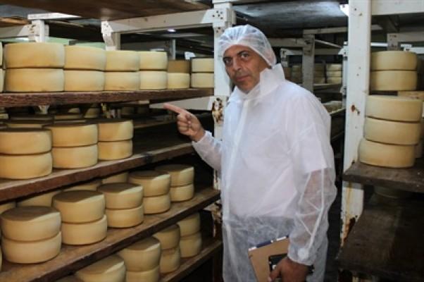 Koop-Süt'ün hedefi Kaşkaval ihracatı...