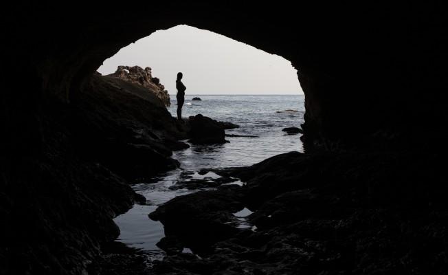 Akdeniz foklarının üreme alanı Kuzey Kıbrıs'ta keşfedildi...