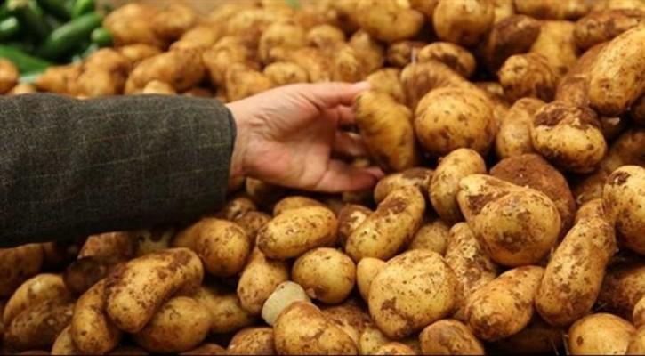 Sofralık patates ihracatına 40 kuruş destek!