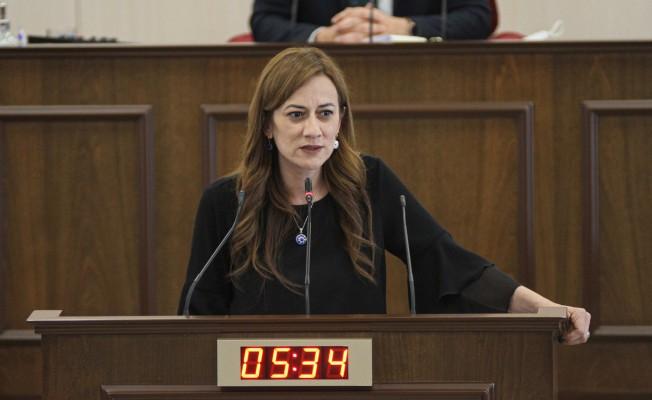 """""""İlk defa Kıbrıslı Türklerin çıkarlarını, iradesini temsil eden makam yok"""""""