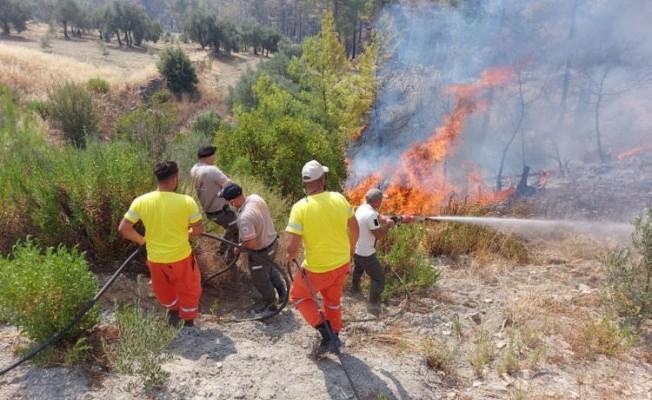 Orman Dairesi ekipleri Alanya'da yangına müdahale ediyor