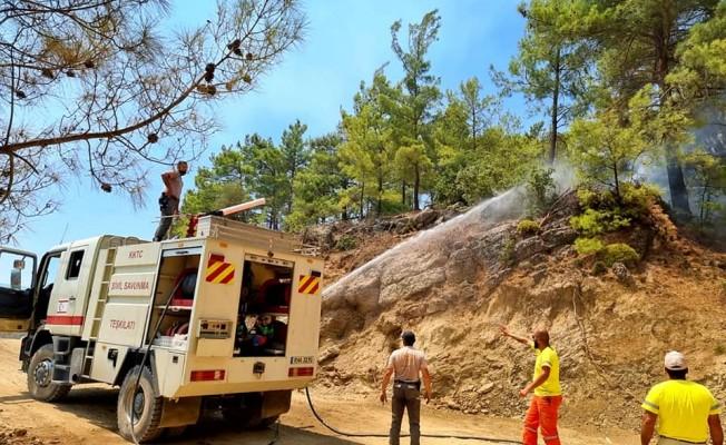 S. Savunma Teşkilatı ekipleri Manavgat yangınına müdahale ediyor