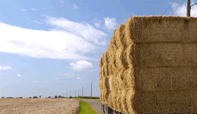 Türkiye'de  mağdur olan çiftçilere KKTC'den yardım
