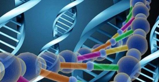 DNA içine milyonlarca CD saklanacak