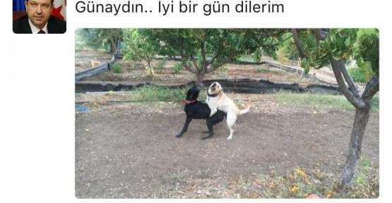 ERSİN TATAR'IN MESAJI KİMEYDİ!