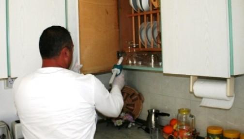 Lefkoşa'da haşere mücadelesi tam gaz