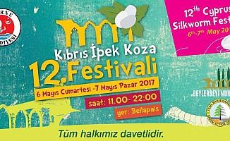 """""""12. Kıbrıs İpek Koza Festivali"""" bugün de devam edecek."""