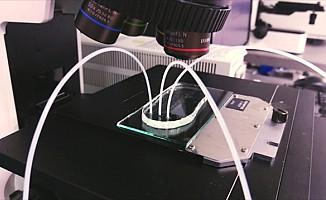 Kanseri teşhis eden cihaz geliştirdi