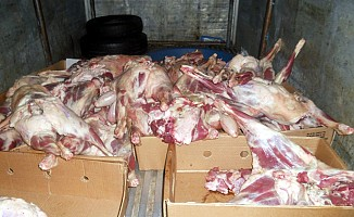392 kilogram dana eti ele geçirildi