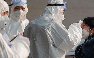 Koronavirüs salgınında ölü sayısı 41'e yükseldi