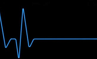 Lerner'in ölüm nedeni kalp yetmezliği